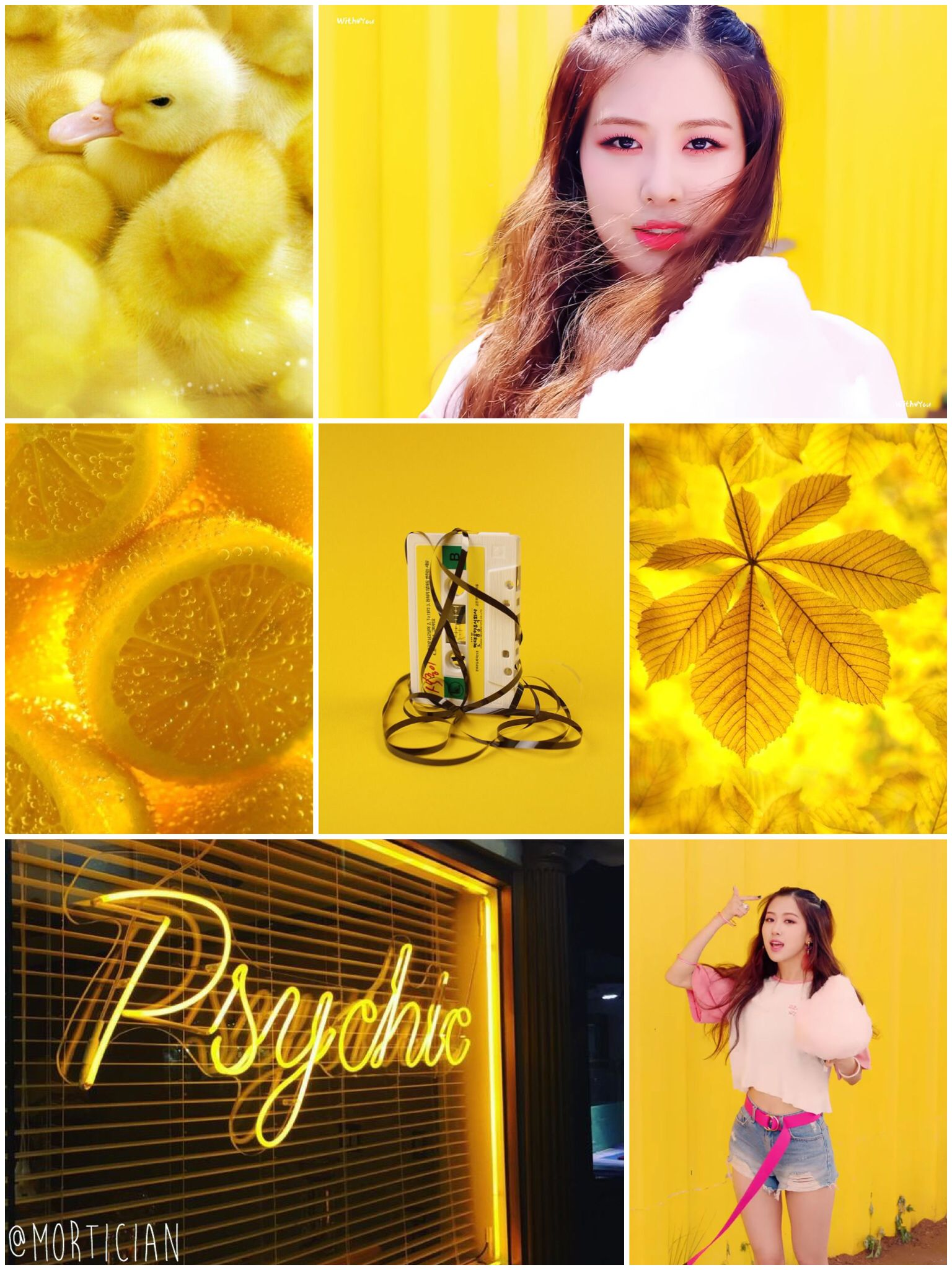 Ros blackpink aesthetic moodboard yellow black flower kpop ros blackpink aesthetic moodboard yellow black flower kpop mightylinksfo