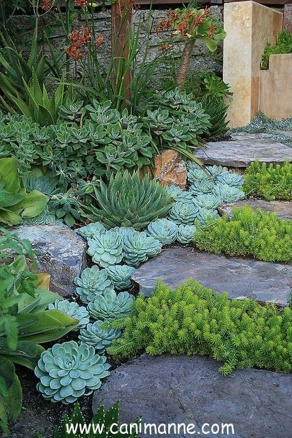 Bahçelerimiz için peysaj örnekleri