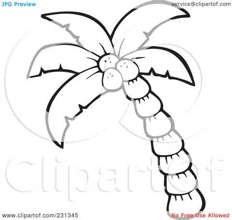 Sabal Palm Coloring Page Coloring Pages Palm Tree Clip Art Leaf