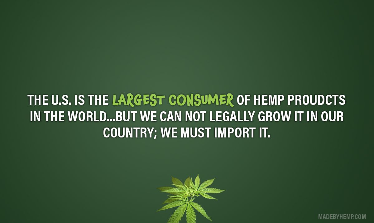 We offer a large selection of imported hemp food, supplements, lotions & more! #hemp #cannabinoids