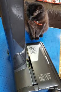 The Brick Castle: GTech Air Ram K9 Review - for people with pets