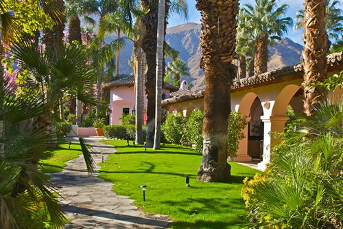 Beautiful landscape backyard ideas pinterest for Palm springs landscape design