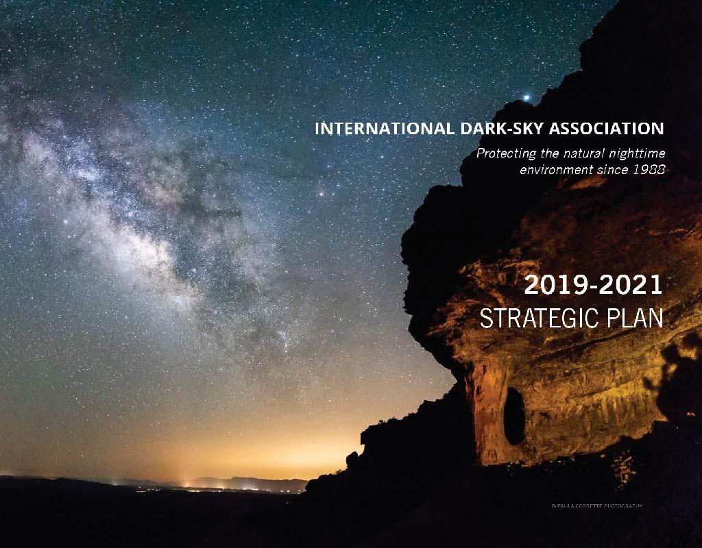 Leading a Movement IDA 3Year Strategic Plan (20192021
