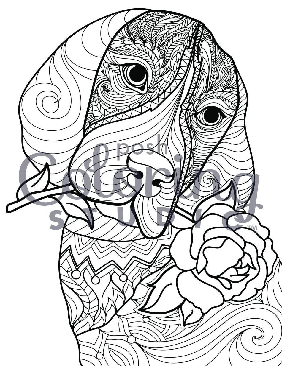 50++ Cute dog coloring pages hard info