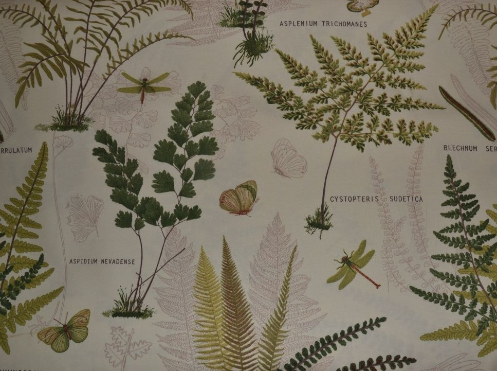 Botanical Wall Art Living Rooms