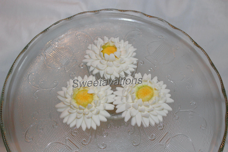 Sugar Flower Daisy Shasta Daisy Qty 6 Fondant Daisy Fondant