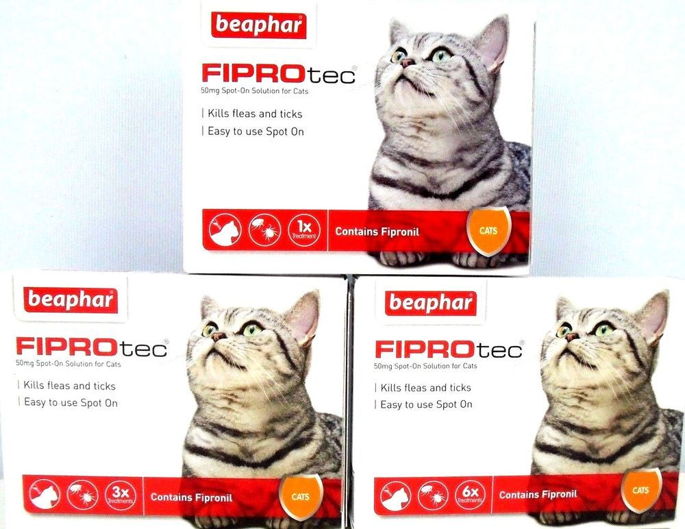 Beaphar Fiprotec Cat Kitten Flea Tick Spot On With Fipronil Vet Strength Beaphar Cats And Kittens Flea And Tick Fleas