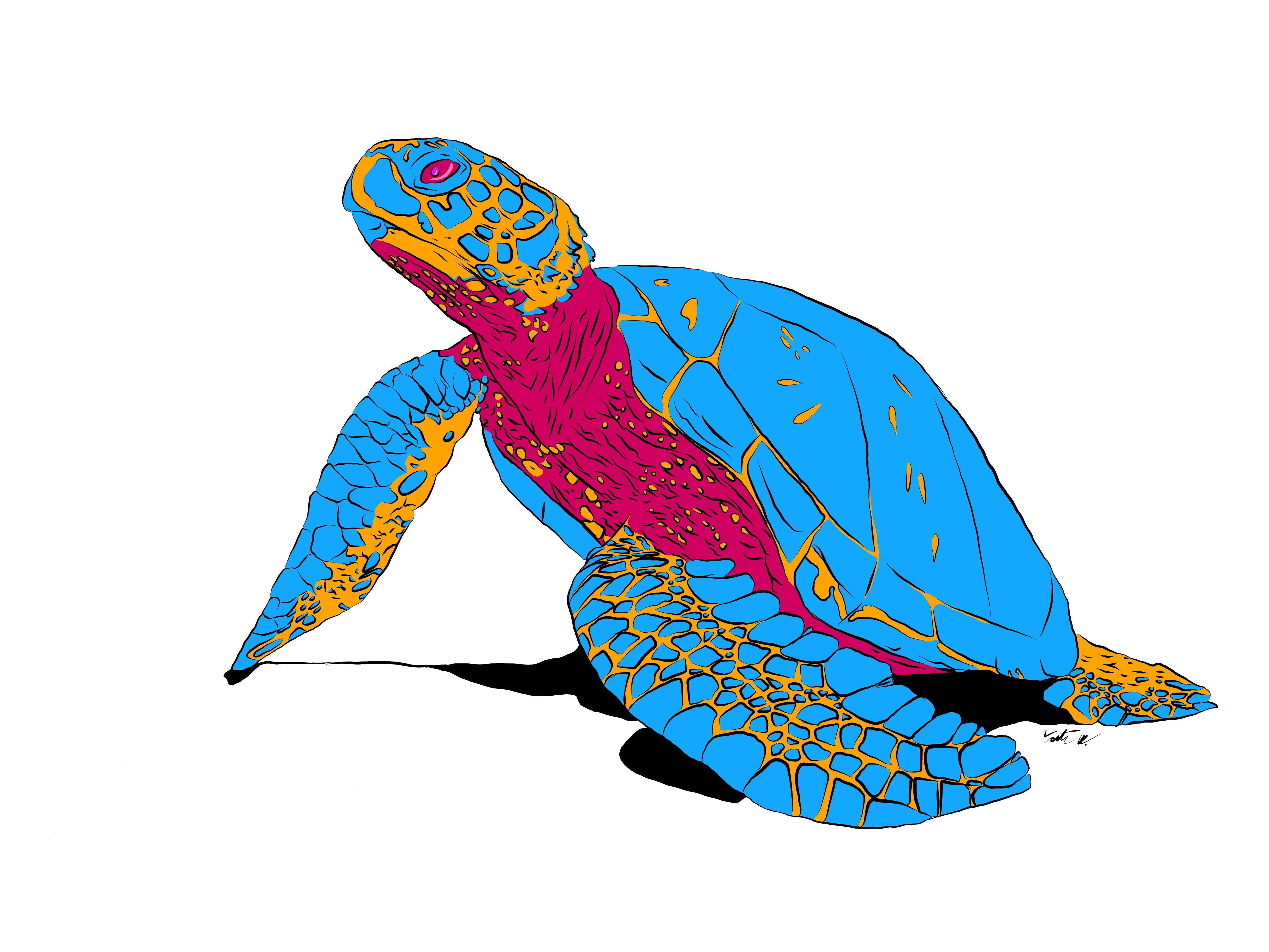 Art Trippy turtle digital 4618x3464 (With images) | Trippy ...