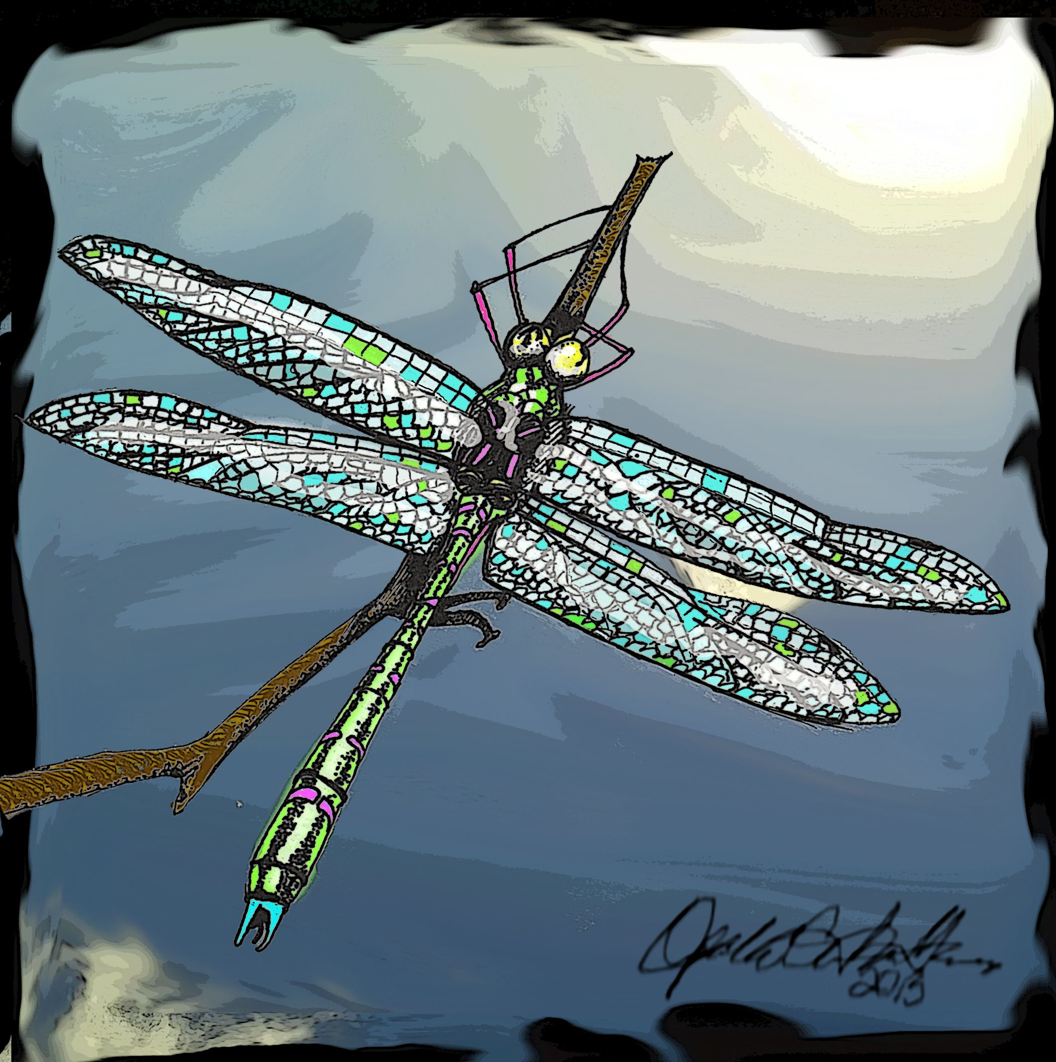 Art, Dragonfly, Drawing by Opal Cintron Heese