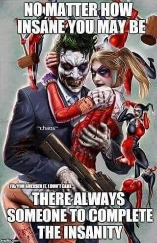 Insanity Complete Cool Nerd Stuff Harley Quinn Joker Harley