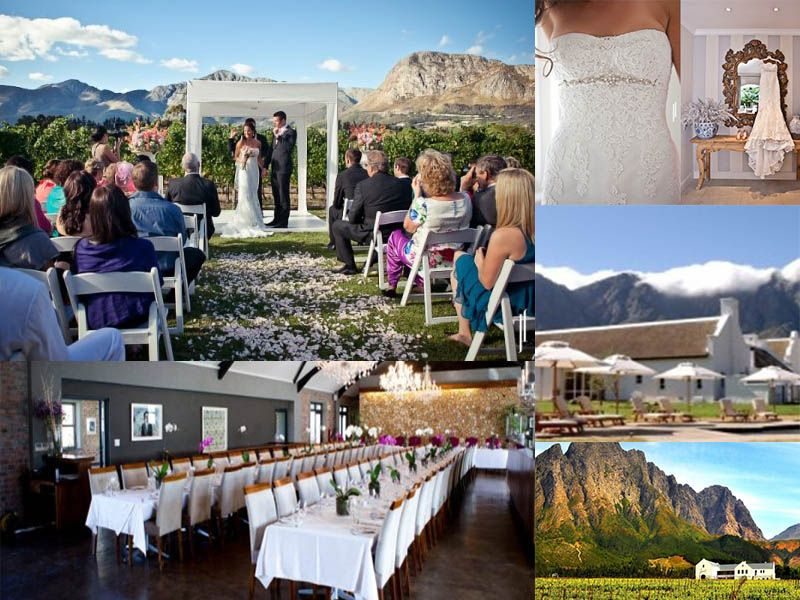 Winelands Vineyard Weddings Vineyard wedding, Cape town