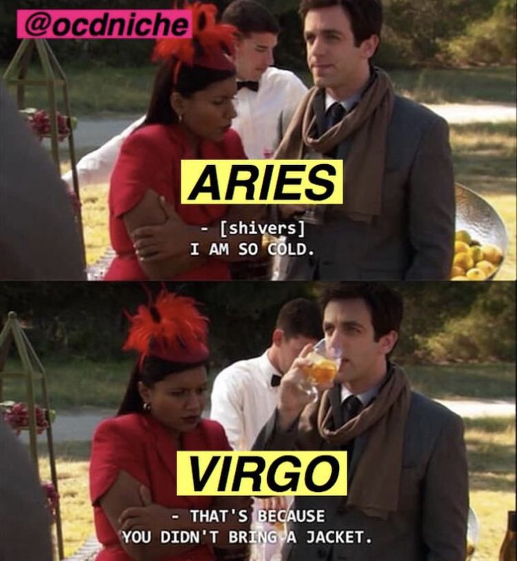 Pin By Paige Helling On Zodiac Signs Zodiac Signs Virgo Aries Zodiac Facts Virgo Memes