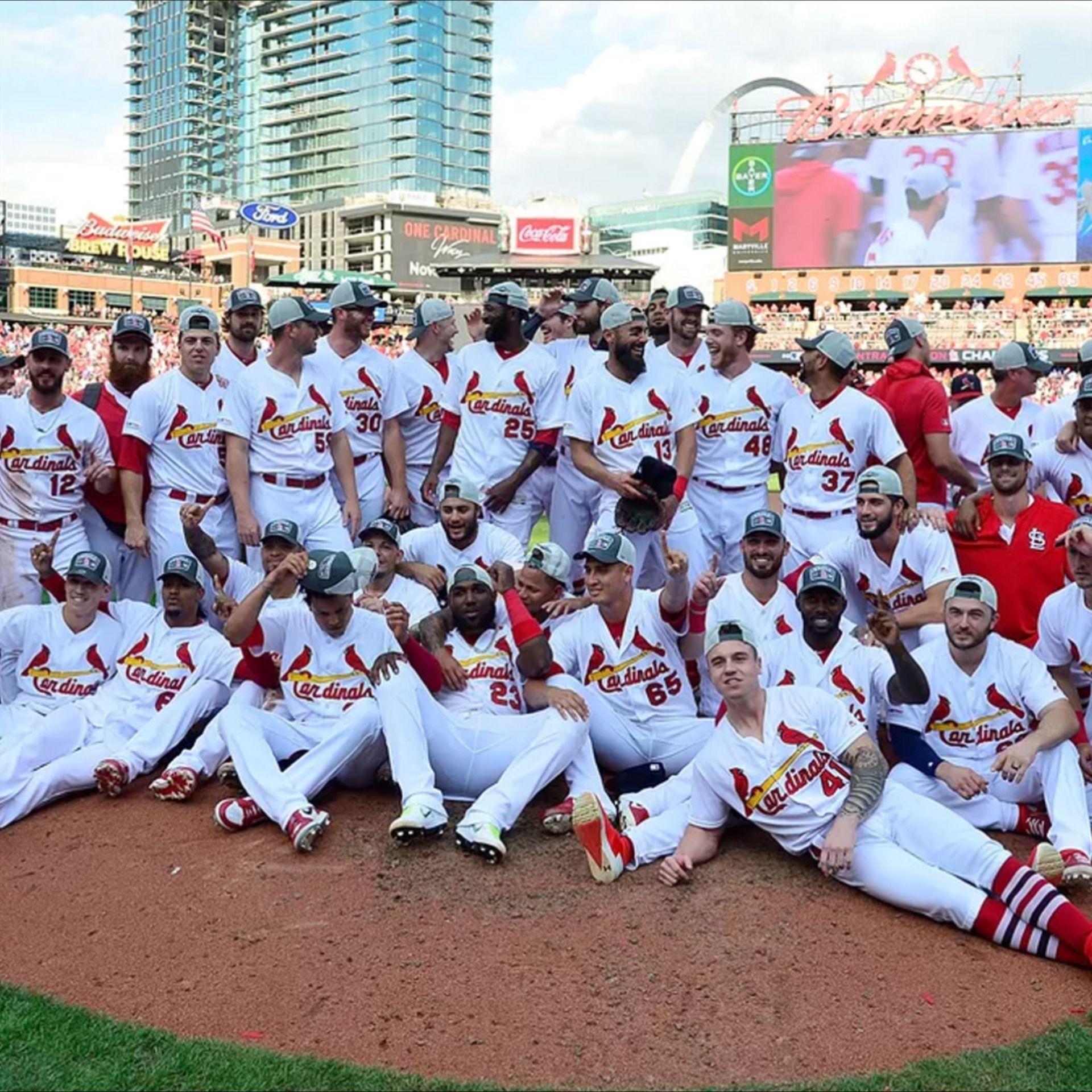 The St Louis Cardinals Louis Cardinals Professional Baseball