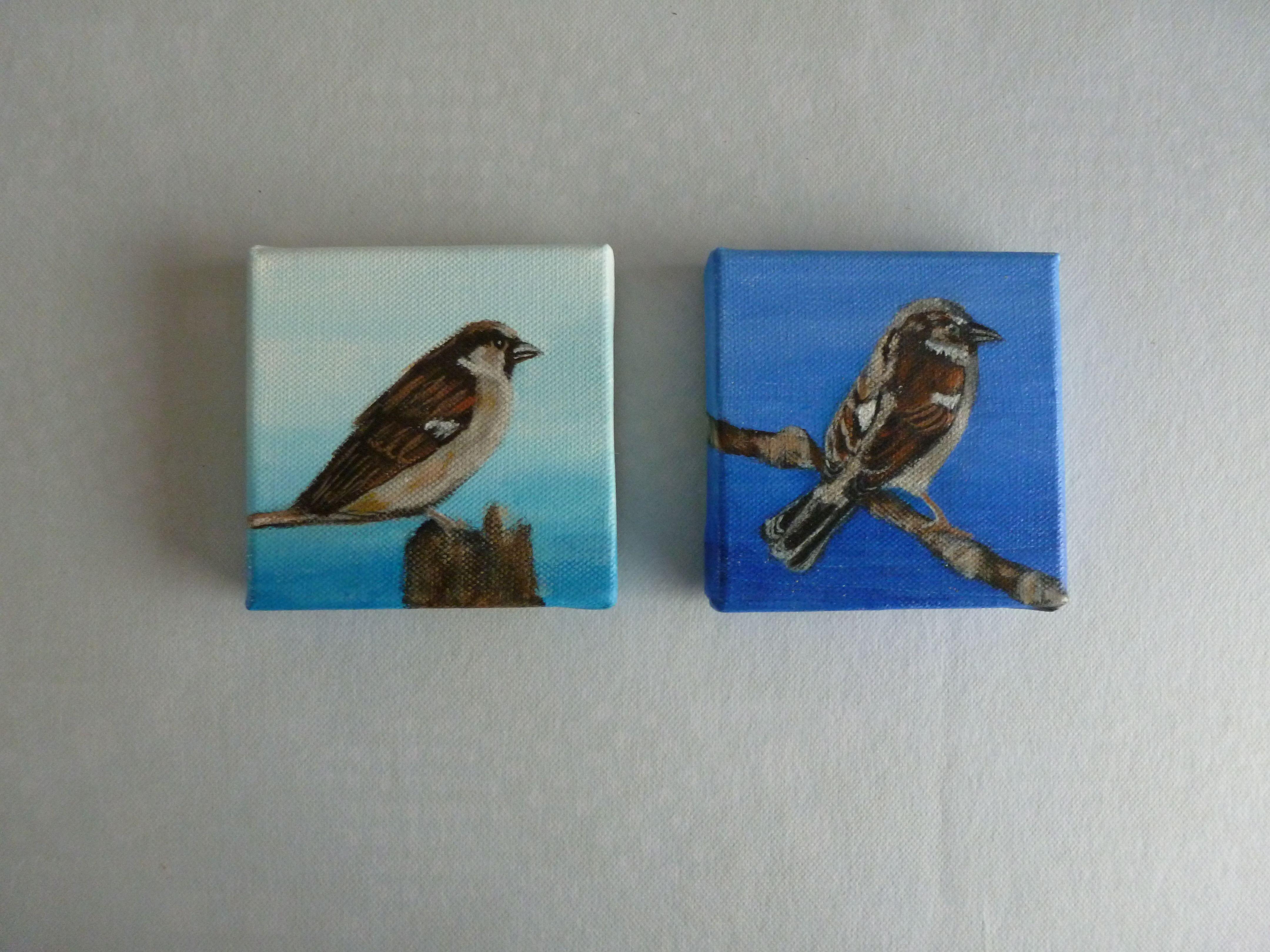 5x5 acrylop doek vogeltjes