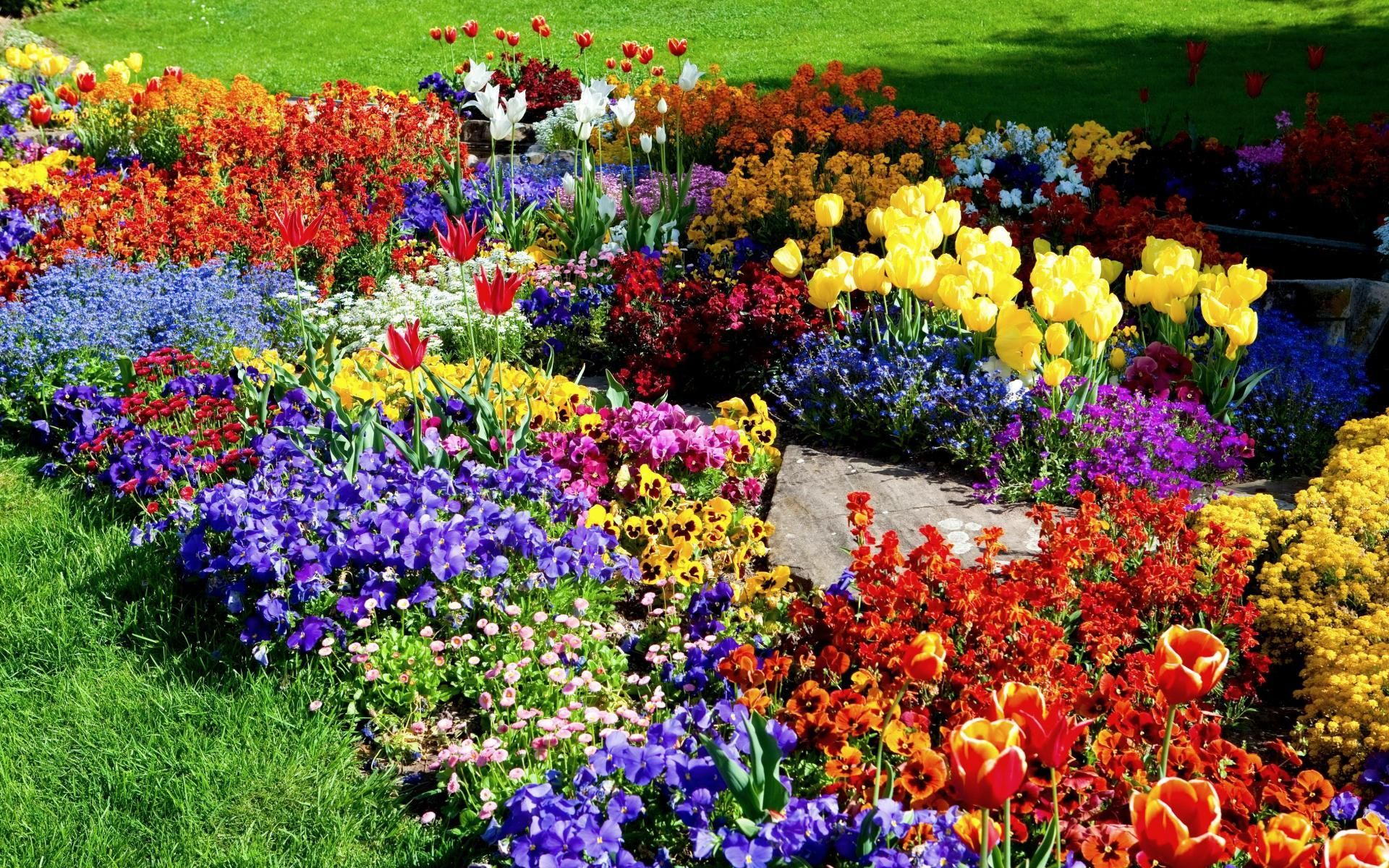 Free Picture Flower Garden Click On The Image For