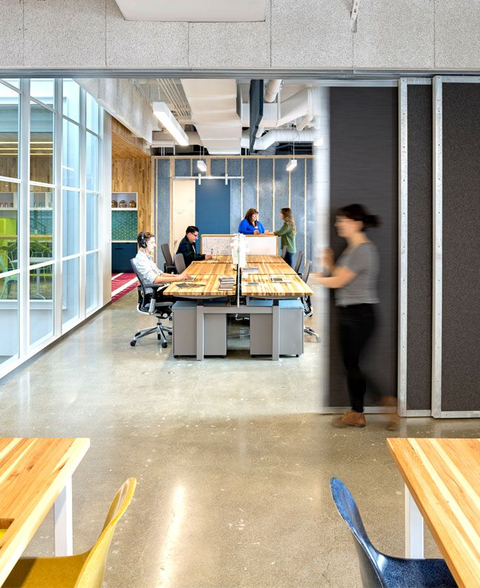 sound absorbing tectum panels; natural wood desk surfaces, colorful, mix  and match chairs