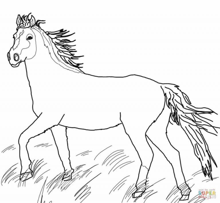 Printable Wild Horse Horse Coloring Pages