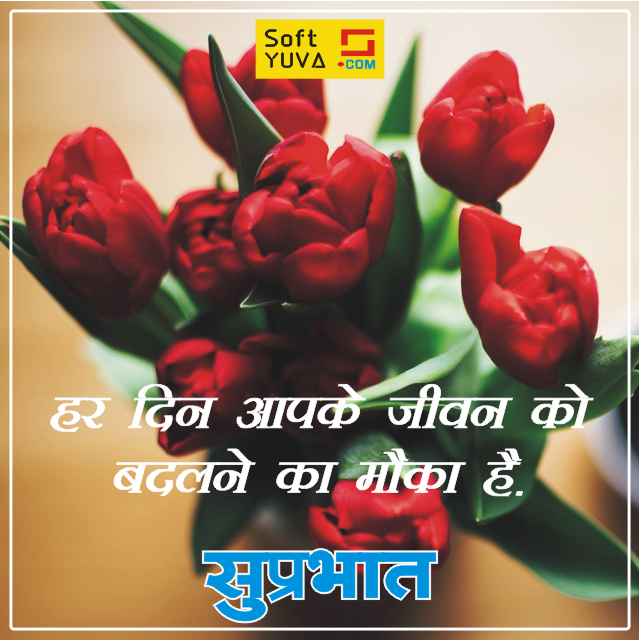 110 Good Morning Quotes In Hindi Good Morning Quotes Morning Quotes Hindi Quotes