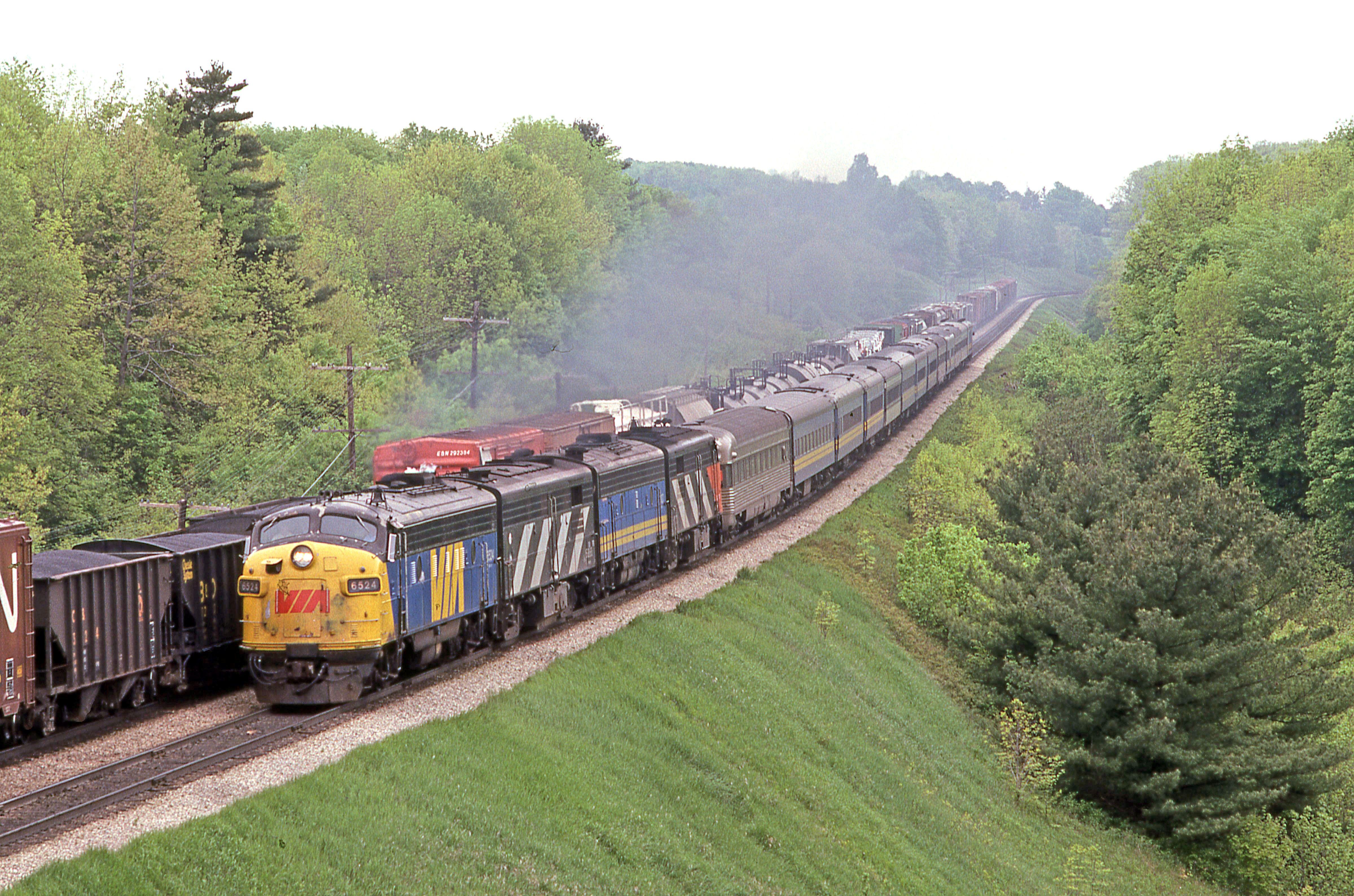 VIA Rail in Copetown Ontario in 2020 Dundas, Canada rail