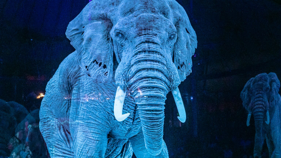 A German circus has the first in the world to use