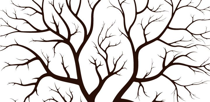Arbol para dibujar con ramas - Imagui | dibujo árboles | Pinterest ...