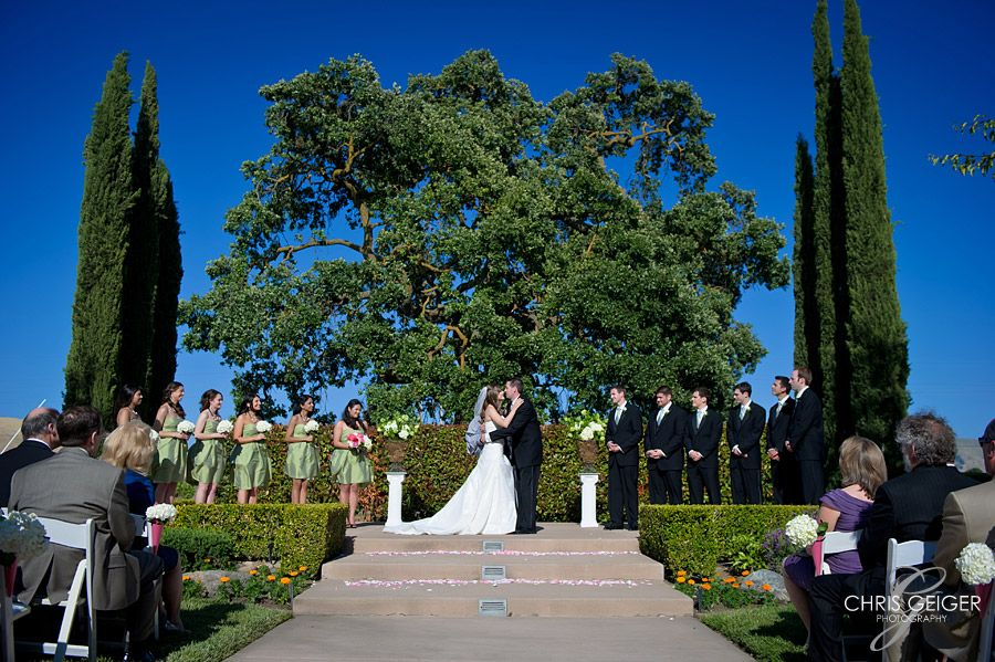 bella rosa ceremony at garr vineyard and winery livermore ca love that oak
