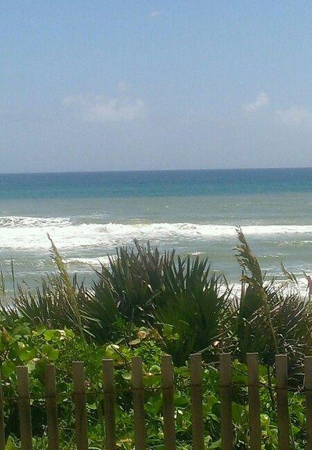 Apollo Beach Fl