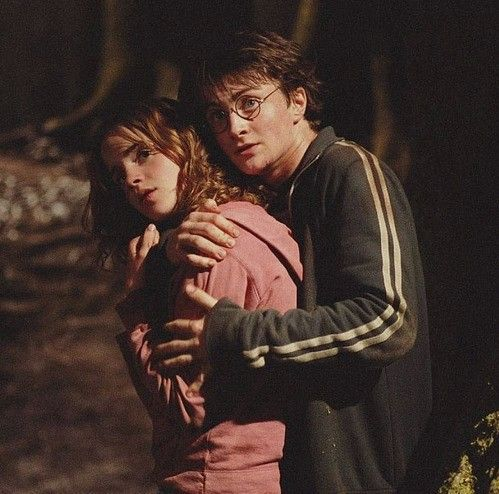 harry and hermione relationship