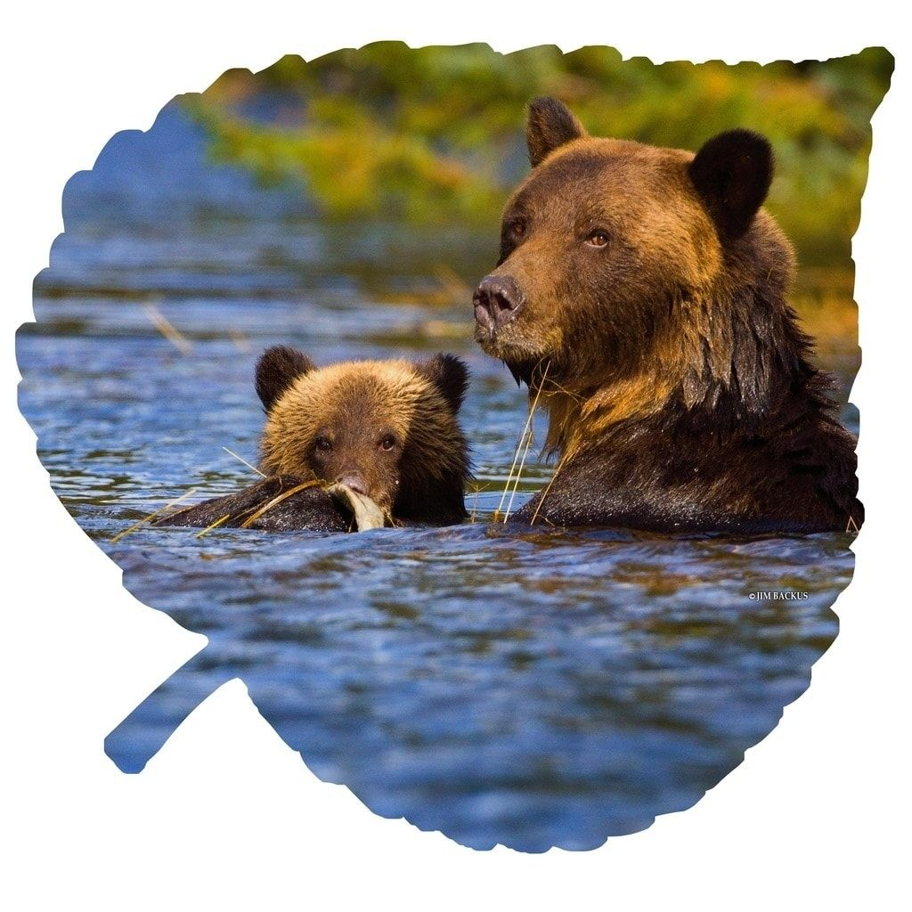 Next innovations grizzly on large aspen leaf steel wall art multi