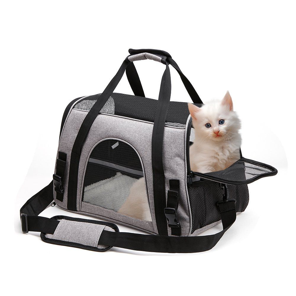 Pet Carrier Airline Approved Collapsible Pet Travel Bag With Comfy Kitten Bed For Small Dogs Cats Puppys You Could Dis Pet Travel Bag Cat Carrier Small Pets