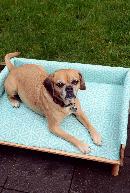 DIY Upholstered Outdoor Dog Bed Outdoor dog bed, Outdoor