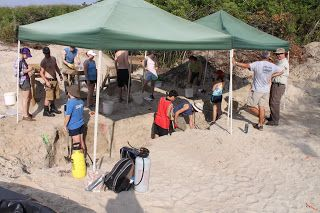 Digging for Answers:  The Continued Search for the Missing Colonists of Roanoke Island