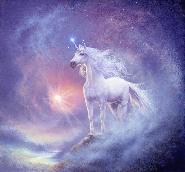 Astral Unicorn Wall Mural Photo Wallpaper Photowall Wall