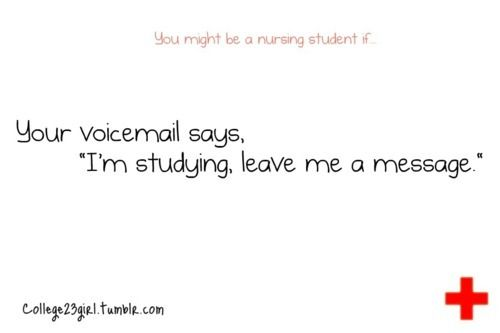 Since The First Day Of Nursing School Funny Nurse Quotes Nurse Quotes Nursing Students