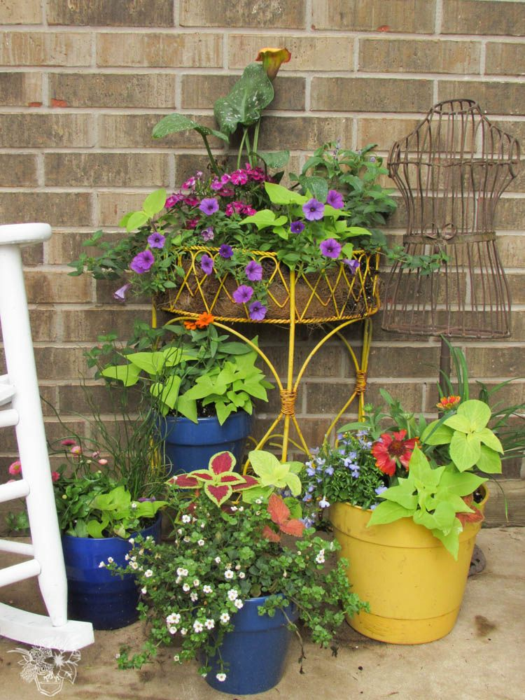 Perfectly composed flower pots