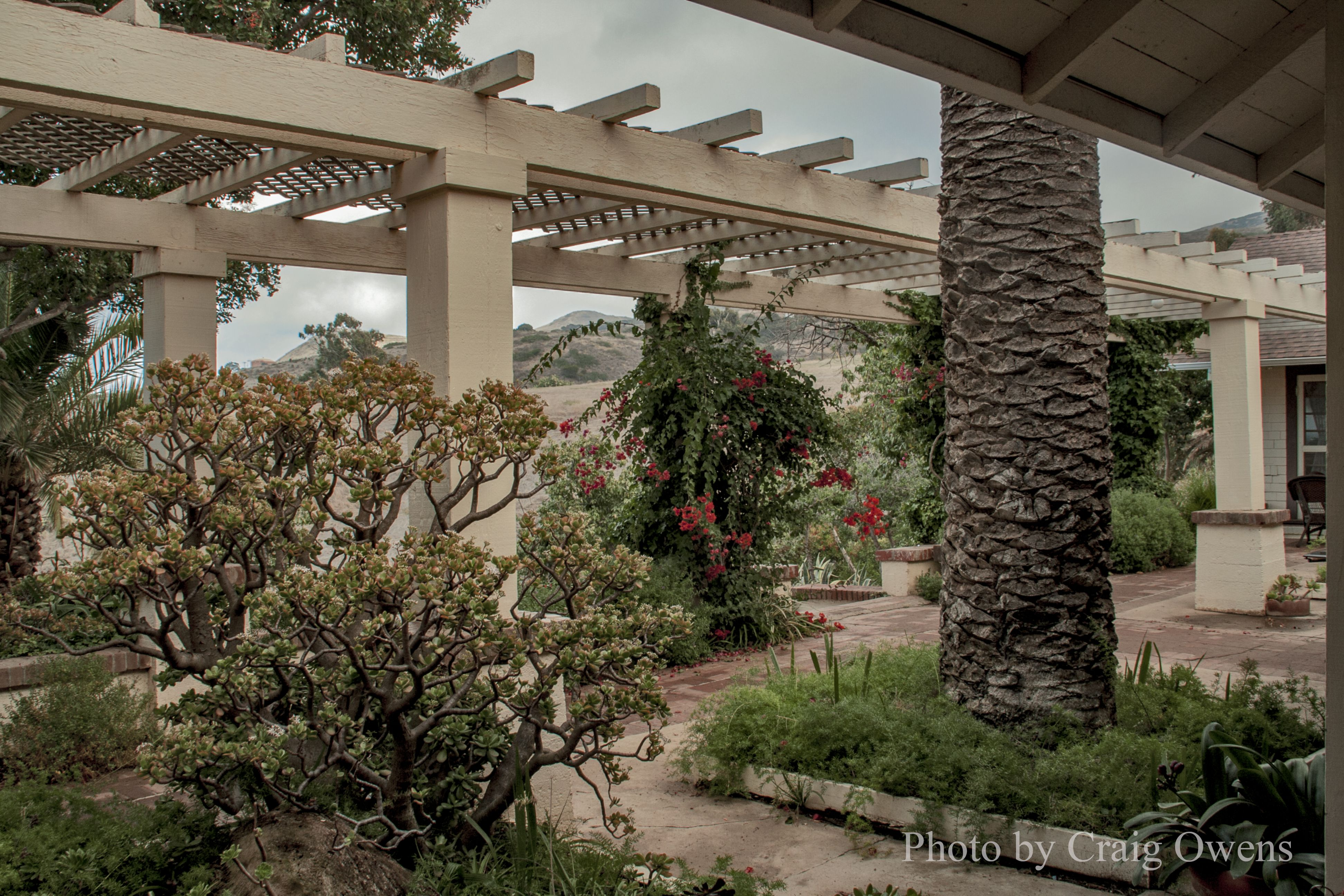 The patio garden at the Banning House Lodge at Two Harbors (Catalina ...