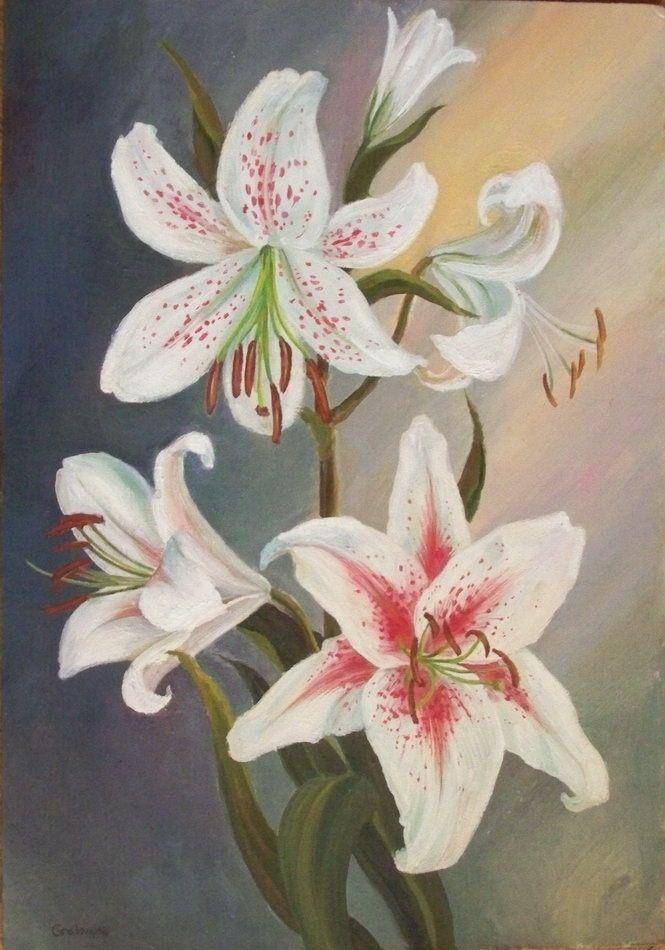 Открытки фото, открытки рисованные с лилиями