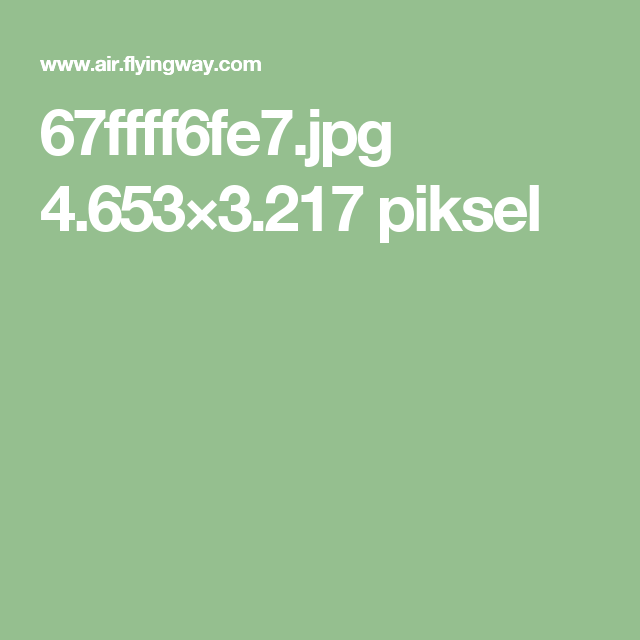 67ffff6fe7.jpg 4.653×3.217 piksel