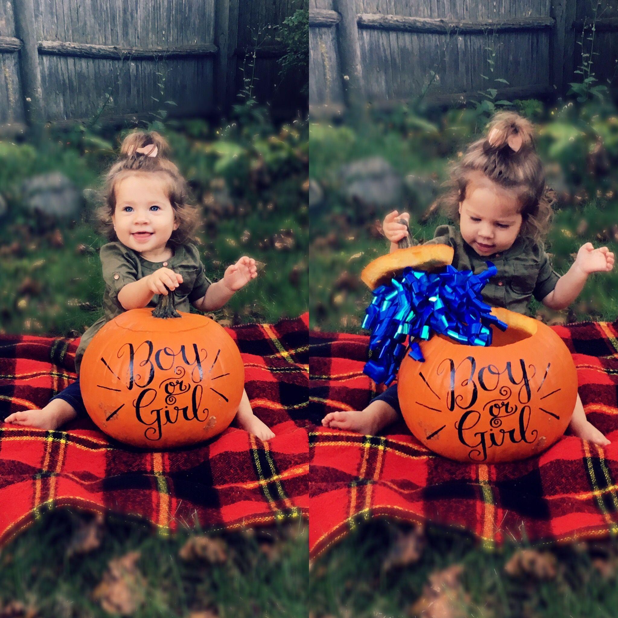 Pumpkin Gender Reveal Boy Gender Reveal Fall Gender Reveal Gender Reveal Photography