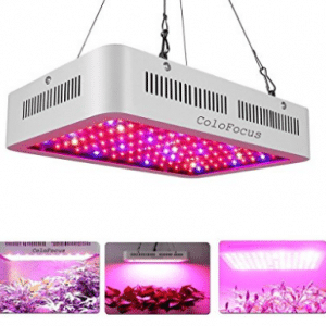 Top 12 Best 1000 Watt Led Grow Lights In 2020 Reviews Buyer S Guide Best Led Grow Lights Led Grow Lights Led Grow
