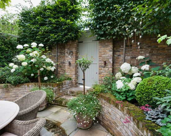 Beautiful small garden idea | West London Courtyard | Gardens ...