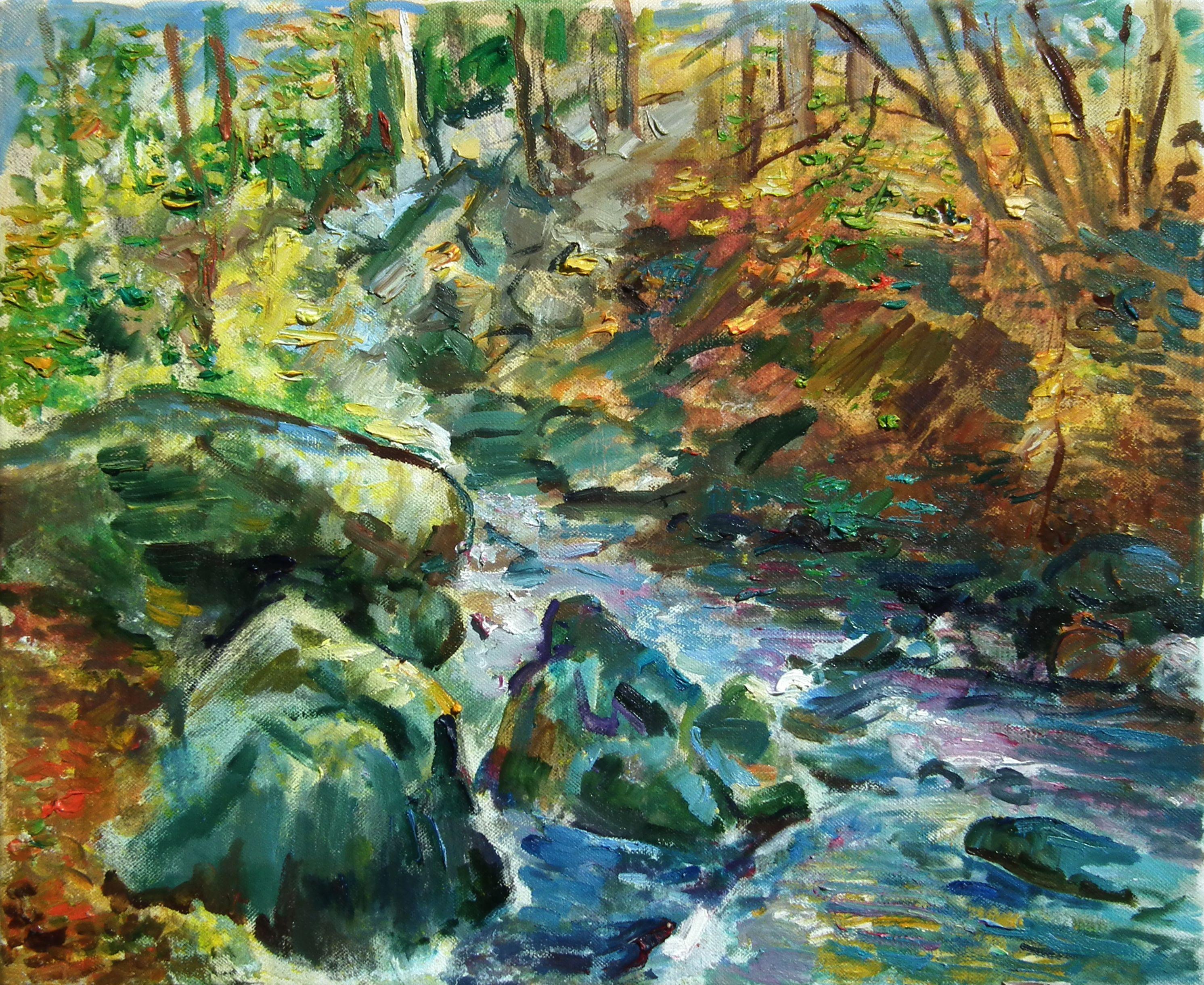 Très Riviere, richers, cascades, foret, forêt, automne, feuilles mortes  VZ46