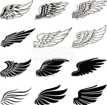 Set of twelve vector wings. The collection includes a simple form of…