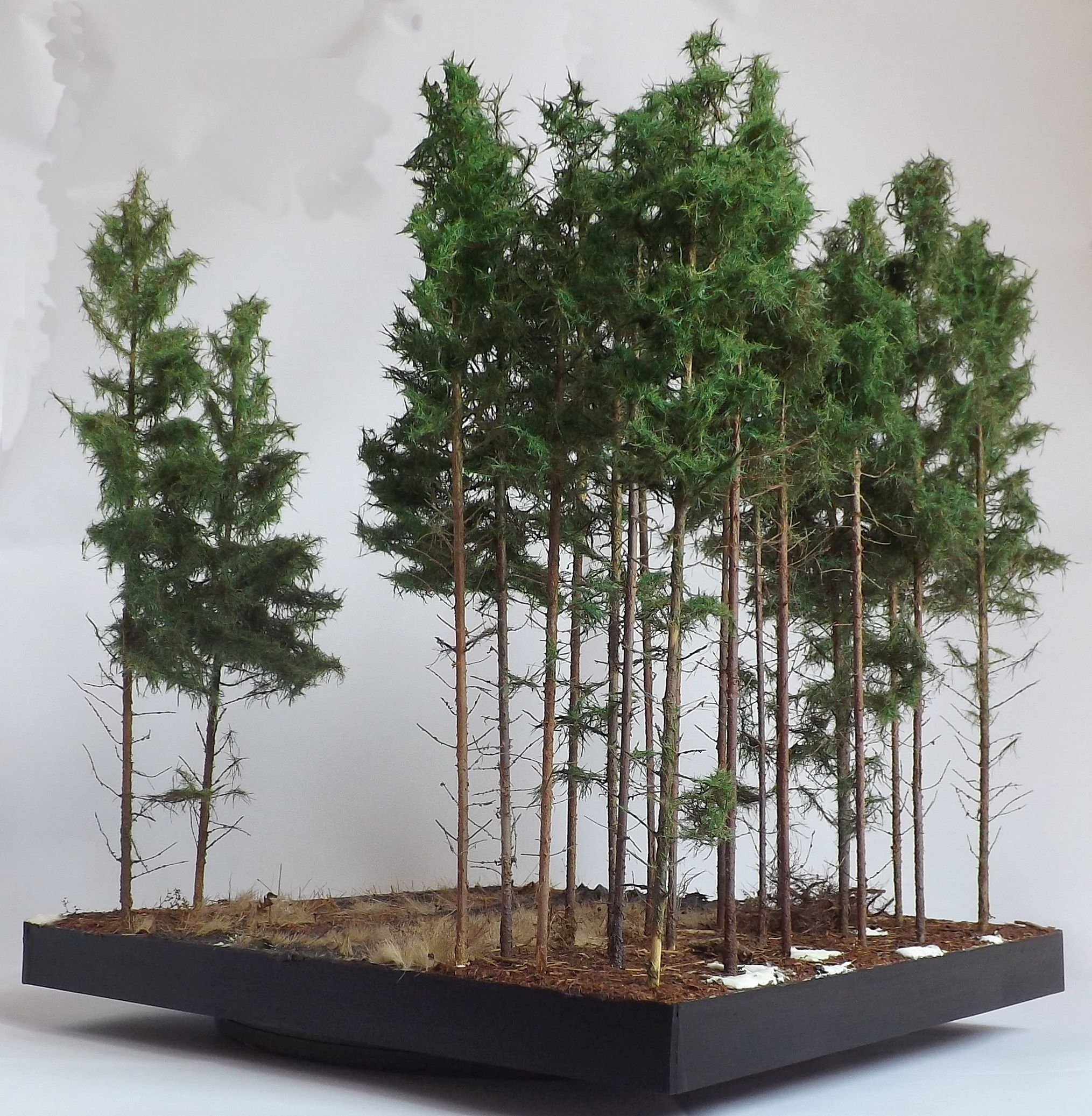 Pine Woods 1 35 Scale Diorama Base By Terence Young Concept Art Inspiration Landscape Design Diorama