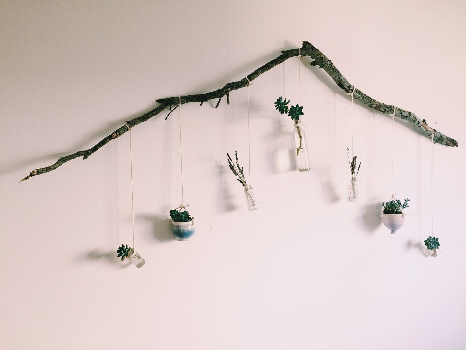 diy inspo: tree branch and macrame cord wall hanging using, succulents, lavender and small glass bottles