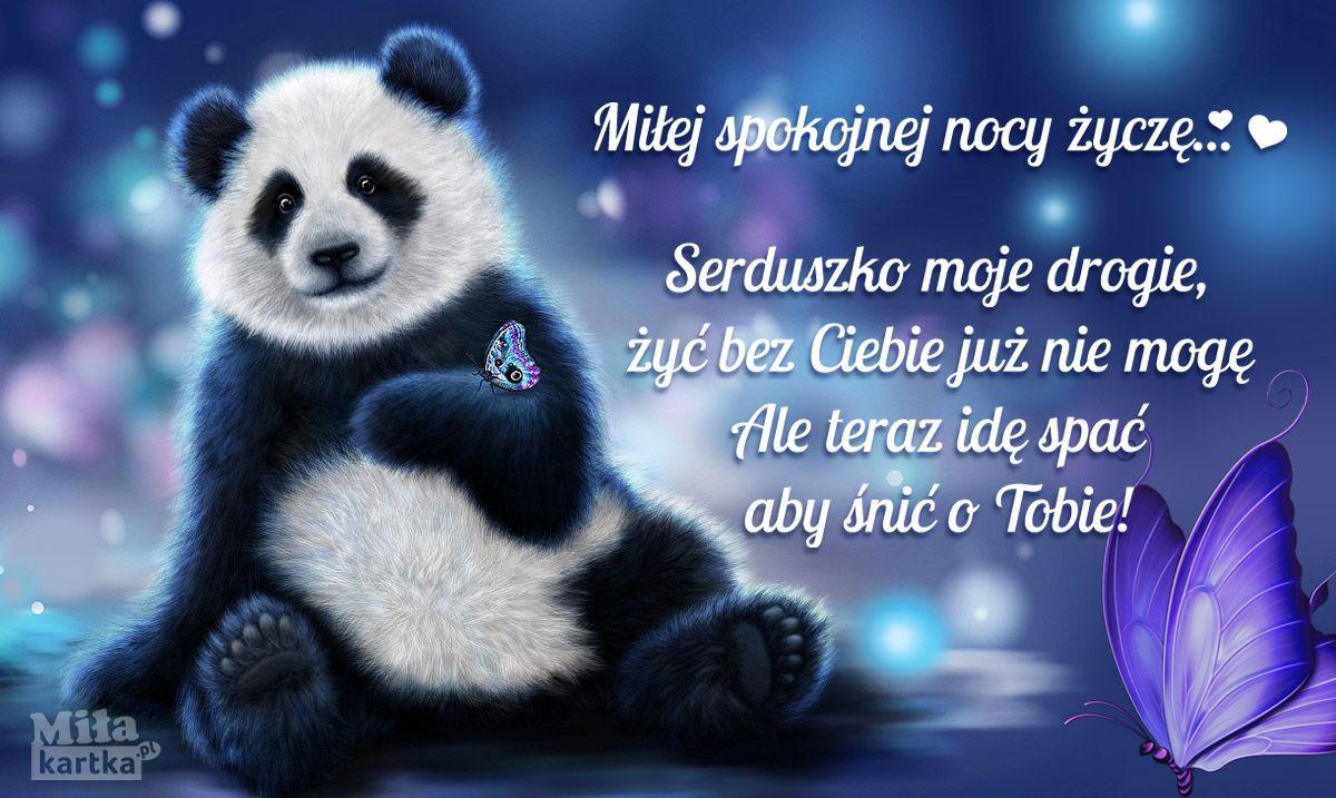 Milej Spokojnej Nocy Kartka Z Panda Dobranoc Nadobranoc Kartki Panda Wieczor Noc Pozdrowienia Ksiezyc Gwiazdy Slodkichsno Panda Panda Bear Shakira