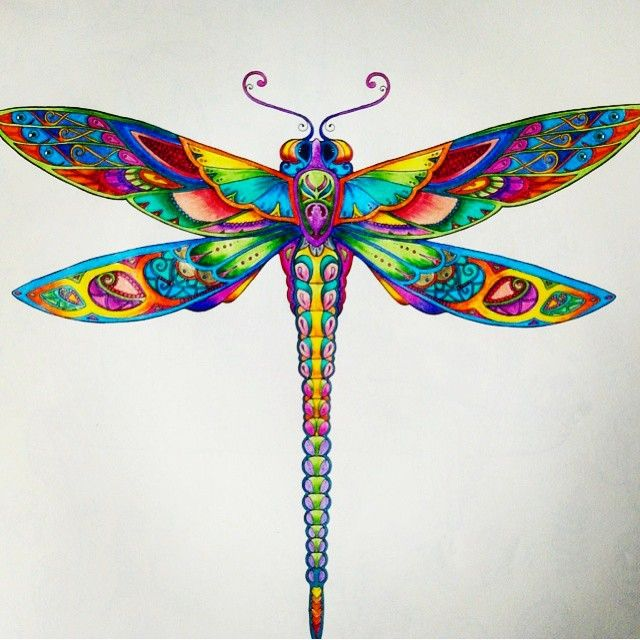 Zentangle Patterns Doodle Dragonfly Adult ColoringColoring BooksJohanna
