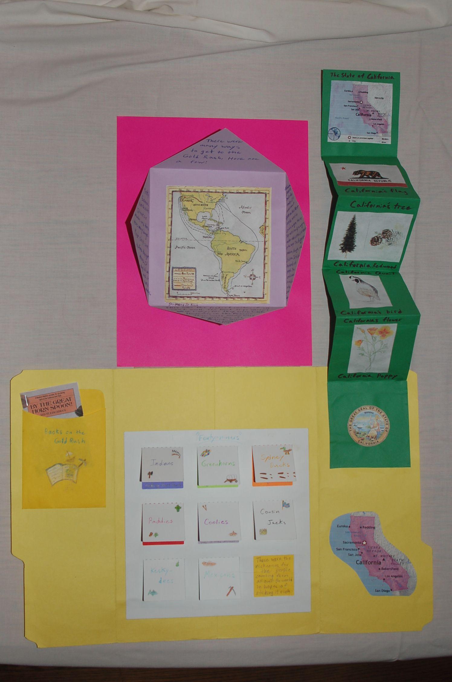 California gold rush lapbook homeschool social studies
