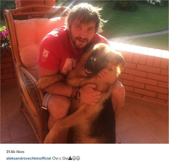 Just a reminder that Alex Ovechkin has five dogs… and he ...