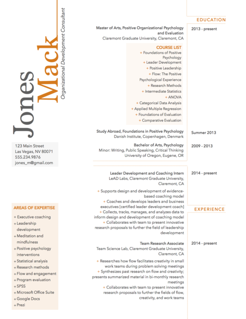 Modern Resume Sample For Organizational Development Consultant